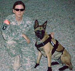 Cooling-vests-working-military-dogs